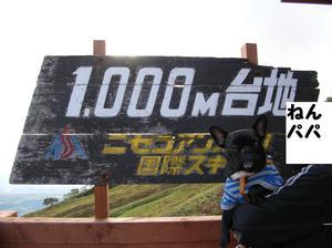 Dscn3099